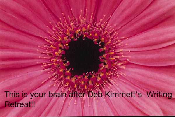 This_is_your_brain_after_Deb_Kimmett_s_Writing_Retreat_1343340273